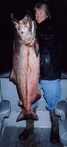 68 Pound King Salmon caught on the Kenai River