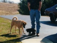 Me, Susie, and my human dad, Mike, with his boots -- Love those boots!