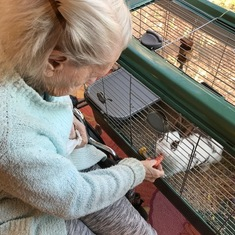Denise loved to visit and sneak carrots to the bunny at Delmar Gardens