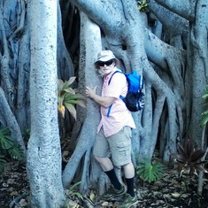 Tree hugger in Hawaii Sept 2016