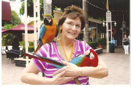 Mom and some parrots