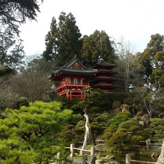 One of his favorite places - the Japanese garden in SF. I dragged my band there on his request