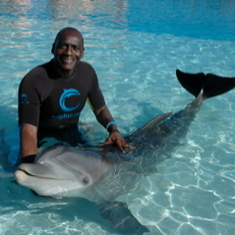 Swimming with dolphins in the Bahamas