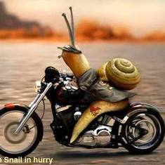 just a motocycle with a snail in memory